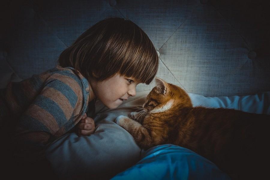 chat et enfant